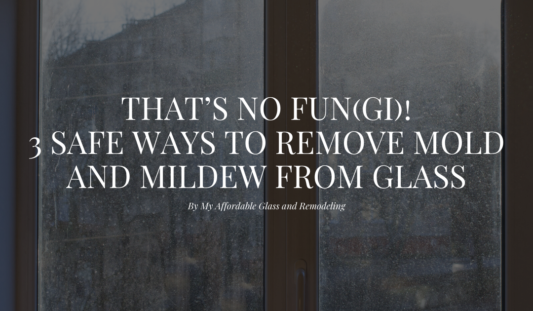 That's No Fun(gi)! 3 Safe Ways to Remove Mold and Mildew from Glass